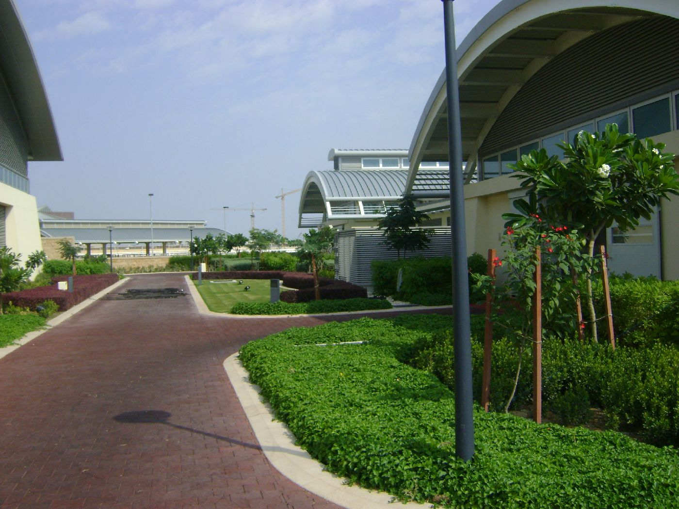 Al Naqi Landscape Company W.L.L Qatar | Doha | Landscape ...